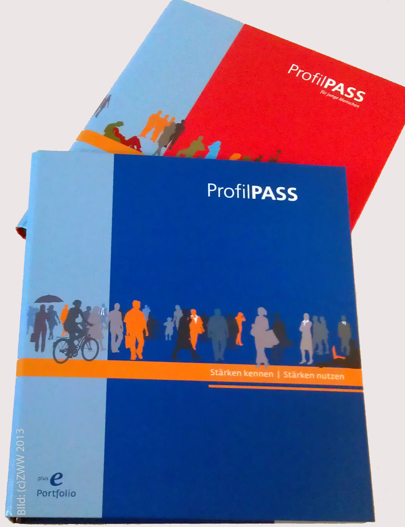 Image result for profilpass germany